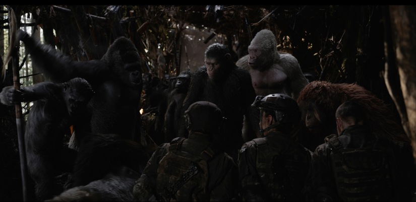 """War for the Planet of the Apes"""